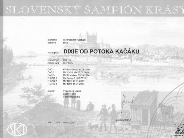 dixie_sampion_sk