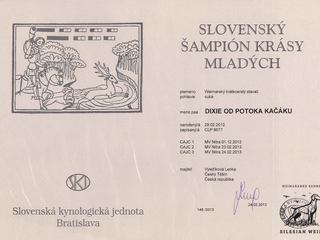 sampion_krasy_sk